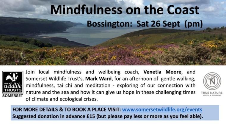 Mindfulness on Coast Poster