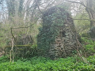 Ruins of the likely Chapel cottage